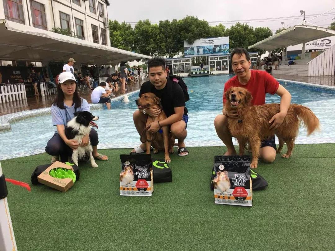 2018冠能非凡犬水上运动挑战赛获奖名单