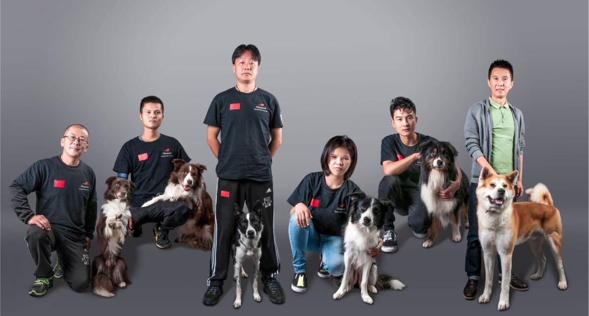 萌物园宠物训练师团队